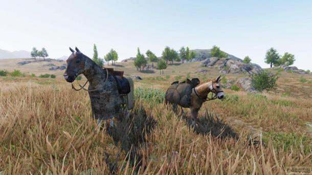 《骑马与砍杀2》新中文开发日志 部队移速系统解释
