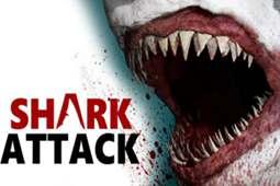 鲨鱼袭击死亡竞赛2图片