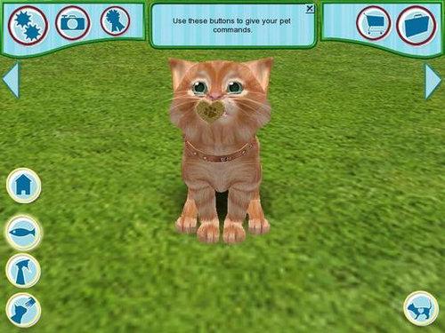 宠物猫2006宠物猫2006下载宠物猫2006攻略
