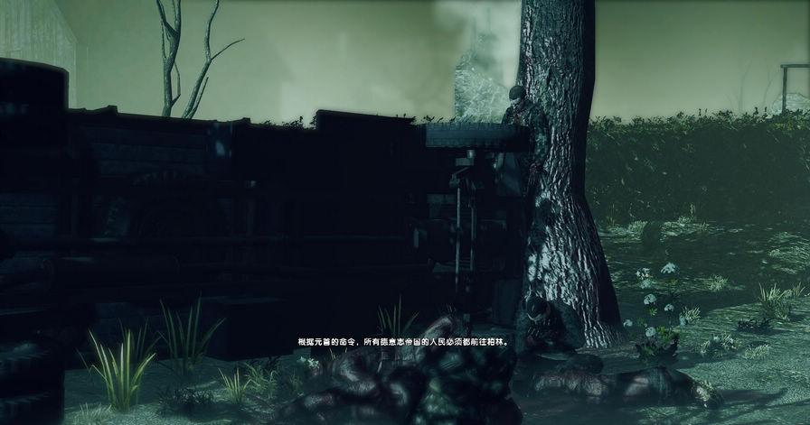 狙击精英:纳粹僵尸大军图片