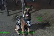 年度游戏里最佳好汪:狗肉 钻石狗及黑狗谁是…