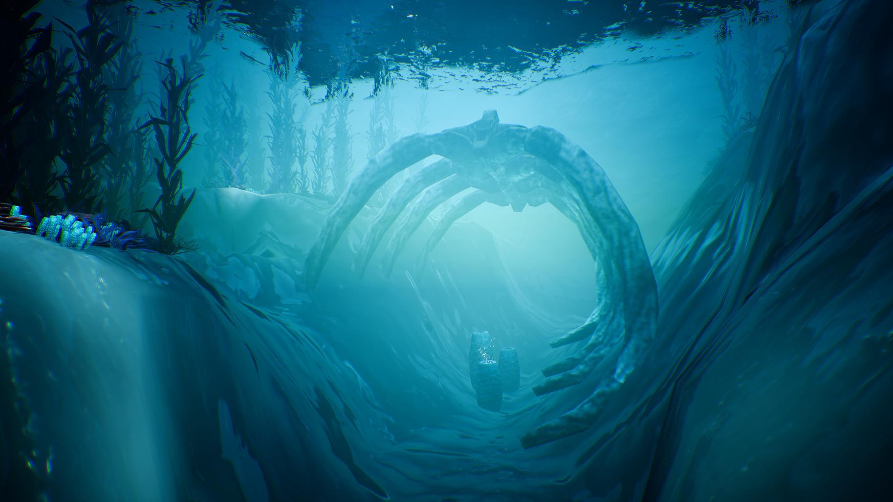 海底星球图片