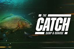 捕获物:鲤鱼和大鱼