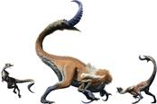 怪物猎人崛起demo闪退怎么办 PC试玩参数错误解决方法
